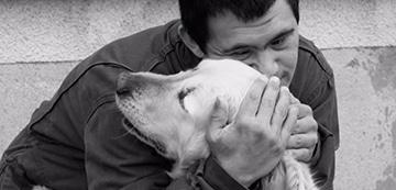 la médiation animale version courte Virgule et les autres